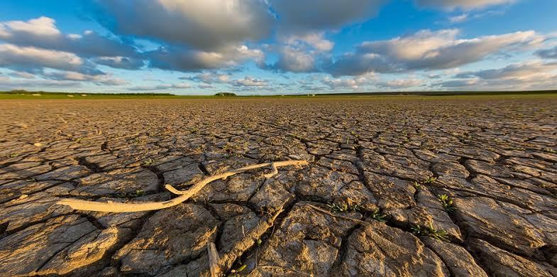 SUSTAINABILITY & CLIMATE  CHANGE